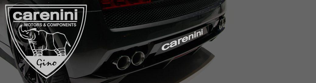 Carenini – Chi siamo